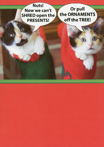 Kittens Stuck in Stockings  (1 card/1 envelope) - Christmas Card - FRONT: Nuts! Now we can't SHRED open the PRESENTS! Or pull the ORNAMENTS off the TREE!  INSIDE: �The stockings were hung with the KITTENS with care�� Merry Christmas
