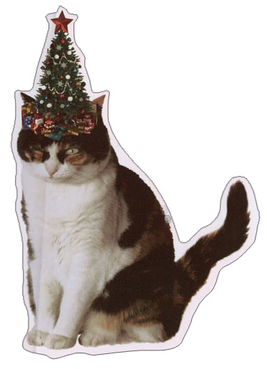 Cat with Tree on Head (1 card/1 envelope) Recycled Paper Greetings Funny Christmas Card  INSIDE: The things I do for love� and a little extra catnip! Merry Christmas from the cat