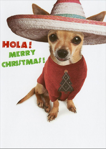 Hola Dog (1 card/1 envelope) Recycled Paper Greetings Funny Christmas Card - FRONT: Hola! Merry Christmas!  INSIDE: Fleece Navidad!