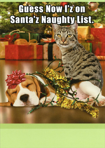 Naughty List Funny / Humorous Christmas Card,  funny Christmas cats