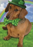 Weinerful St Patrick's Day (1 card/1 envelope) - St. Patrick's Day Card  INSIDE: Wishing you the most Wienerful St. Patrick's Day ever!