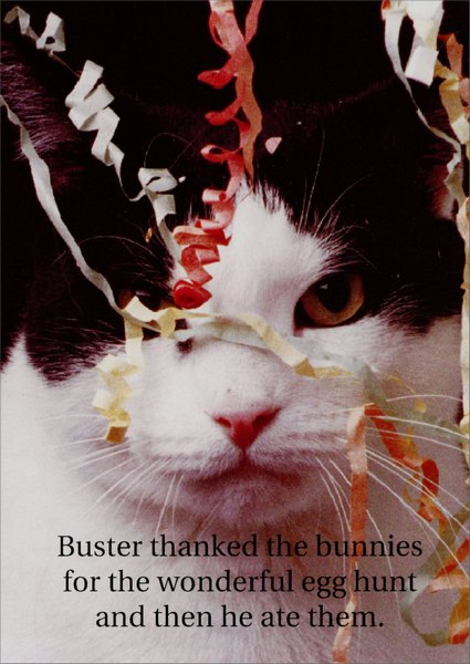 Buster Thanked the Bunny (1 card/1 envelope) Funny Easter Card - FRONT: Buster thanked the bunnies for the wonderful egg hunt and then he ate them.  INSIDE: The eggs!  He ate the eggs!  Happy Easter