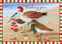 Birds with Holiday Attire (1 card/1 envelope) Red Farm Studios Beach Christmas Card