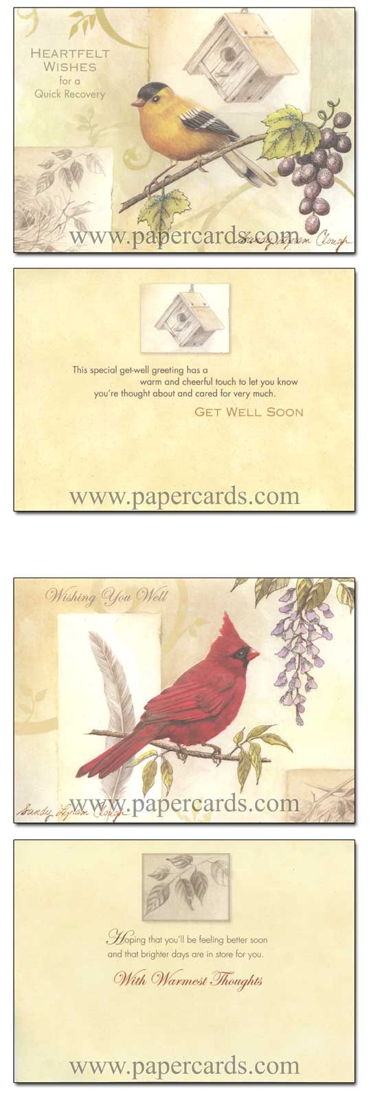 Song Birds (12 Get Well Cards with envelopes) - Boxed Get Well Cards - FRONT: Various  INSIDE: Various