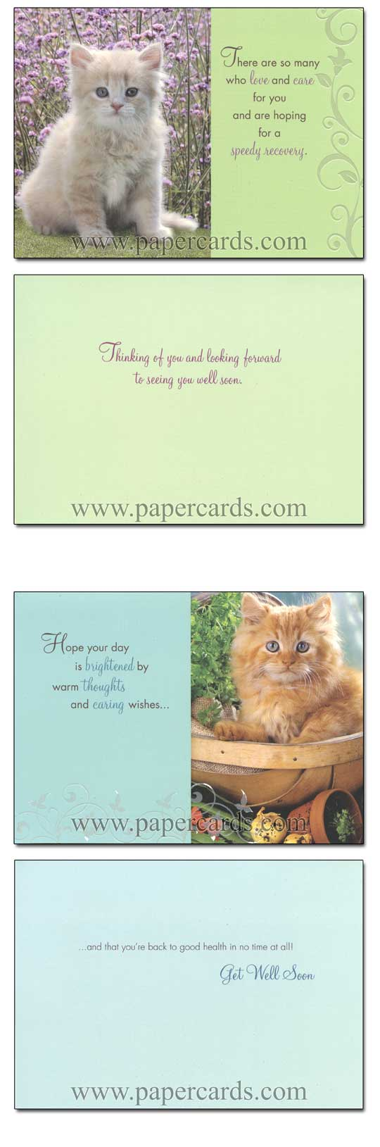 Curious Kittens (12 Get Well Cards with envelopes) - Boxed Get Well Cards - FRONT: Various  INSIDE: Various