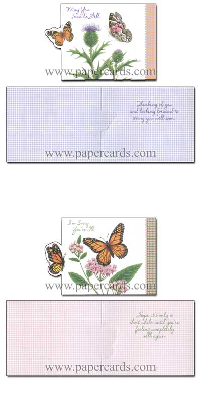 Petite Greetings (12 Get Well Cards with envelopes) Assorted Butterfly Boxed Get Well Cards - FRONT: Various  INSIDE: Various