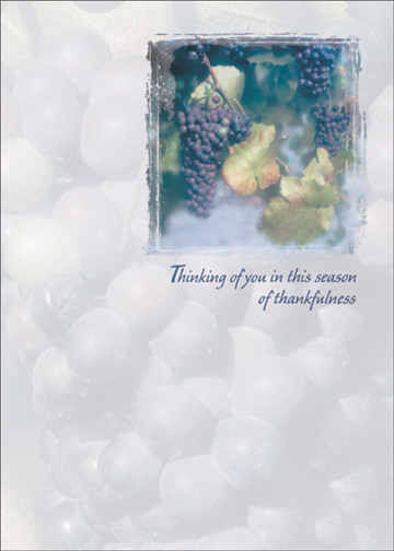 Grapes on Vine (1 card/1 envelope) Thanksgiving Card - FRONT: Thinking of you in this season of thankfulness  INSIDE: Though the miles are many, the distance between caring hearts is small. Wishing we could be together at Thanksgiving.