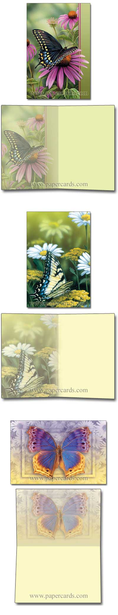 A Moments Rest (12 cards/12 envelopes) Tree-Free Noteables Boxed Blank Note Cards