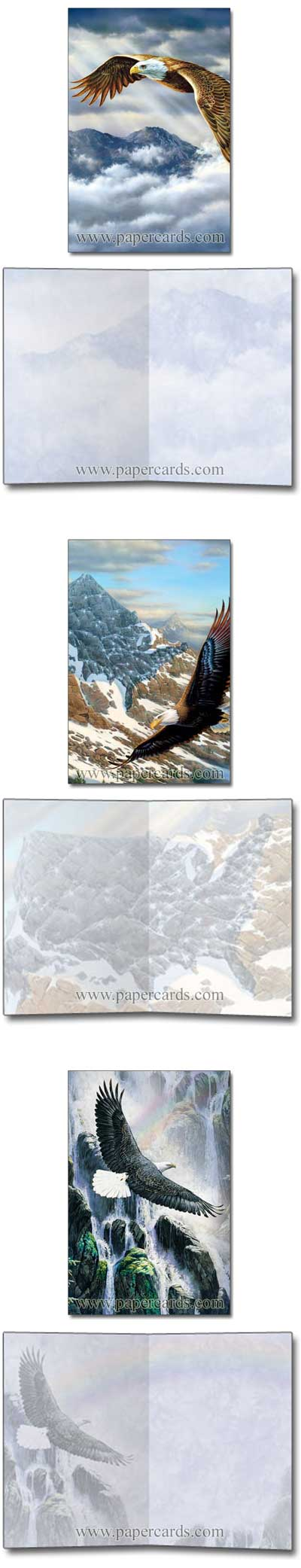Eagle Spirit (12 cards/12 envelopes) Tree-Free Noteables Boxed Blank Note Cards