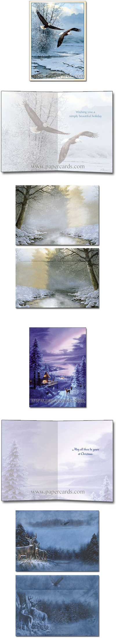 Winter Wonders (24 cards/24 envelopes) Tree-Free Greetings Boxed Christmas Cards