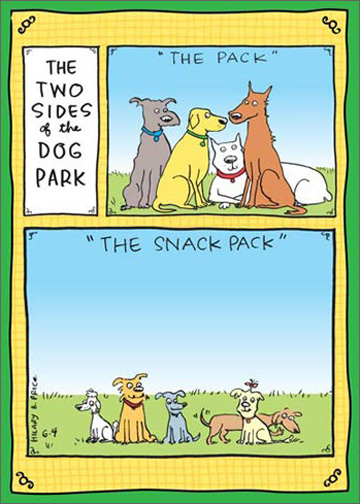Wish Big (1 card/1 envelope) - Birthday Card - FRONT: The Two Sides of the Dog Park - �The Pack� - �The Snack Pack�  INSIDE: Wish BIG! Happy Birthday