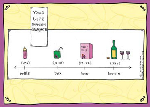 Grapejuice (1 card/1 envelope) - Birthday Card - FRONT: Your Life Through Grapejuice - (0-2) bottle(2-10) box(17-22) box(23+) bottle  INSIDE: Some things do get better with age. Have a vintage birthday.