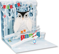 Snowy Owl (1 card/1 envelope) Up With Paper Pop-Up Christmas Card