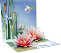 Water Lily (1 card/1 envelope) Up With Paper Pop-Up Greeting Card